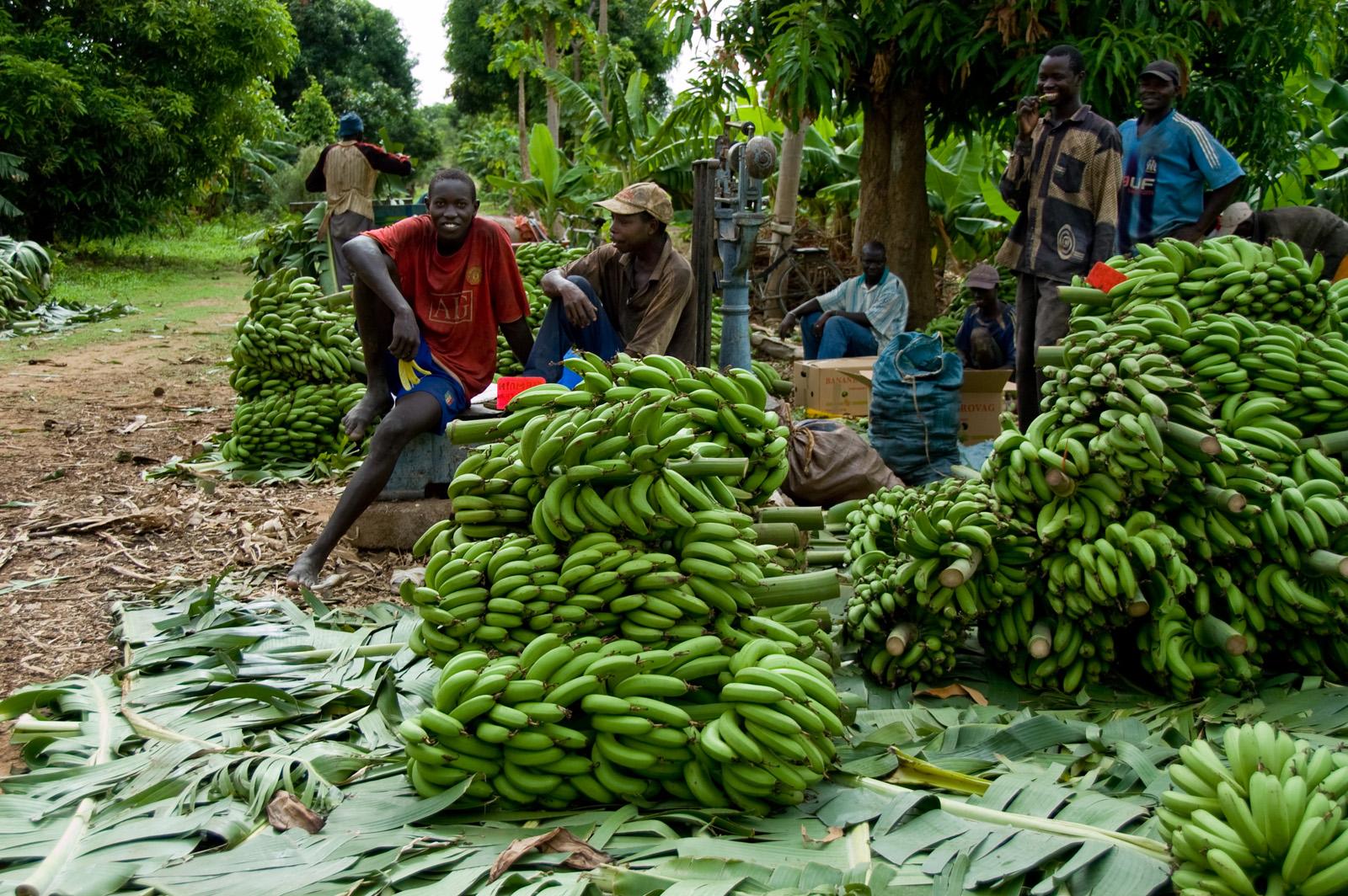 Tambacounda in Senegal: werk aan de winkel