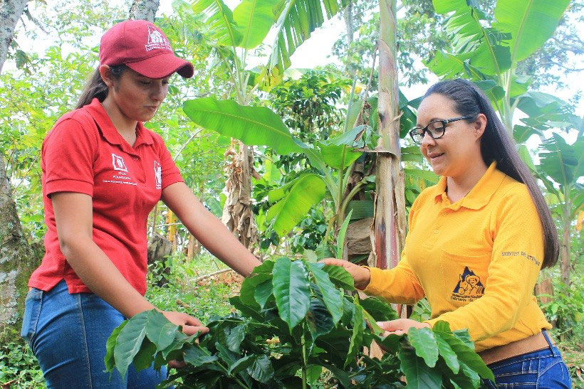Mariana (left) is learning about coffee plants