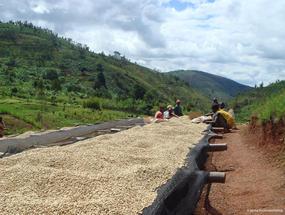 Project Burundi