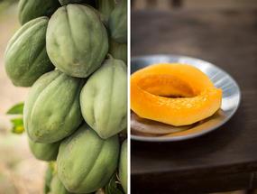 Papaya